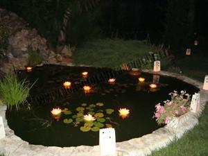 Lanterne galleggianti fiore di loto